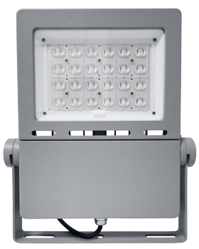 FLE 100w led flood light